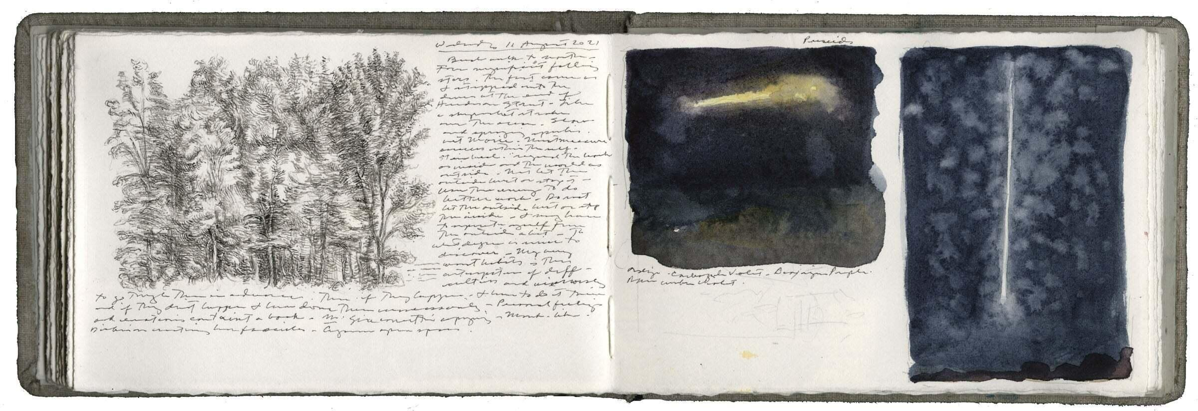 Study after Leonardo and Sketches of Perseid Meteors image