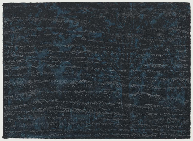Blue Night image