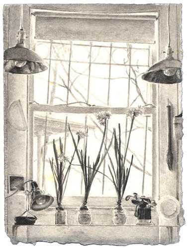 Window with Paper Whites image
