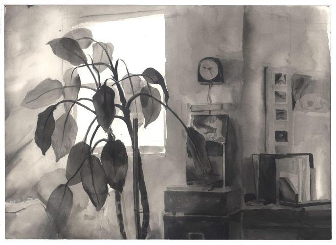 Interior with Diffenbachia image