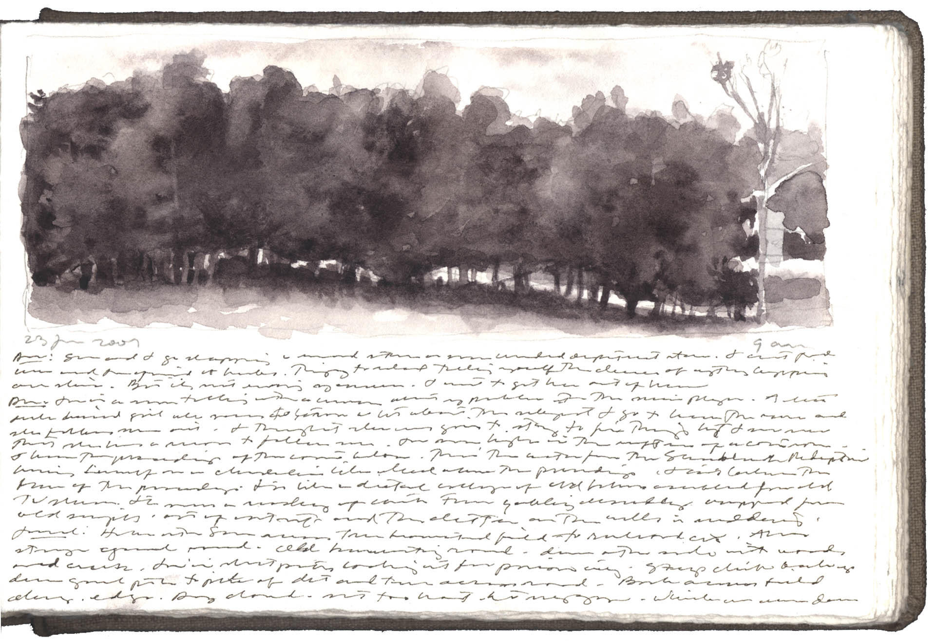Line of Trees, Keysville, Virginia image