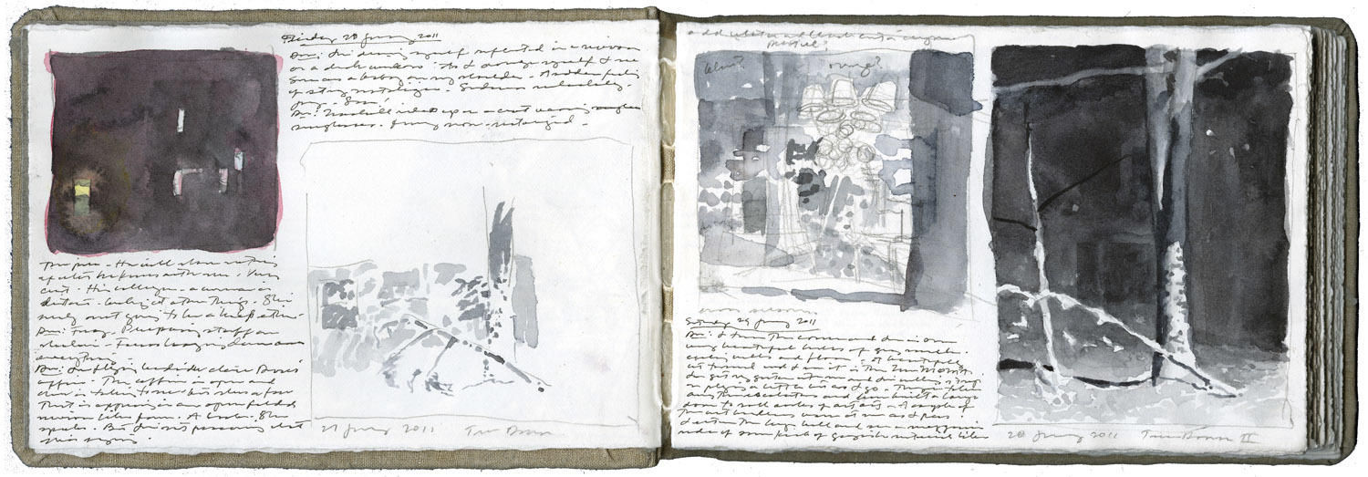 Two Pages with Four Studies, Two of a Fallen Tree image