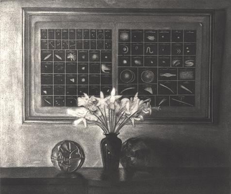 Daffodils with Astronomical Chart image