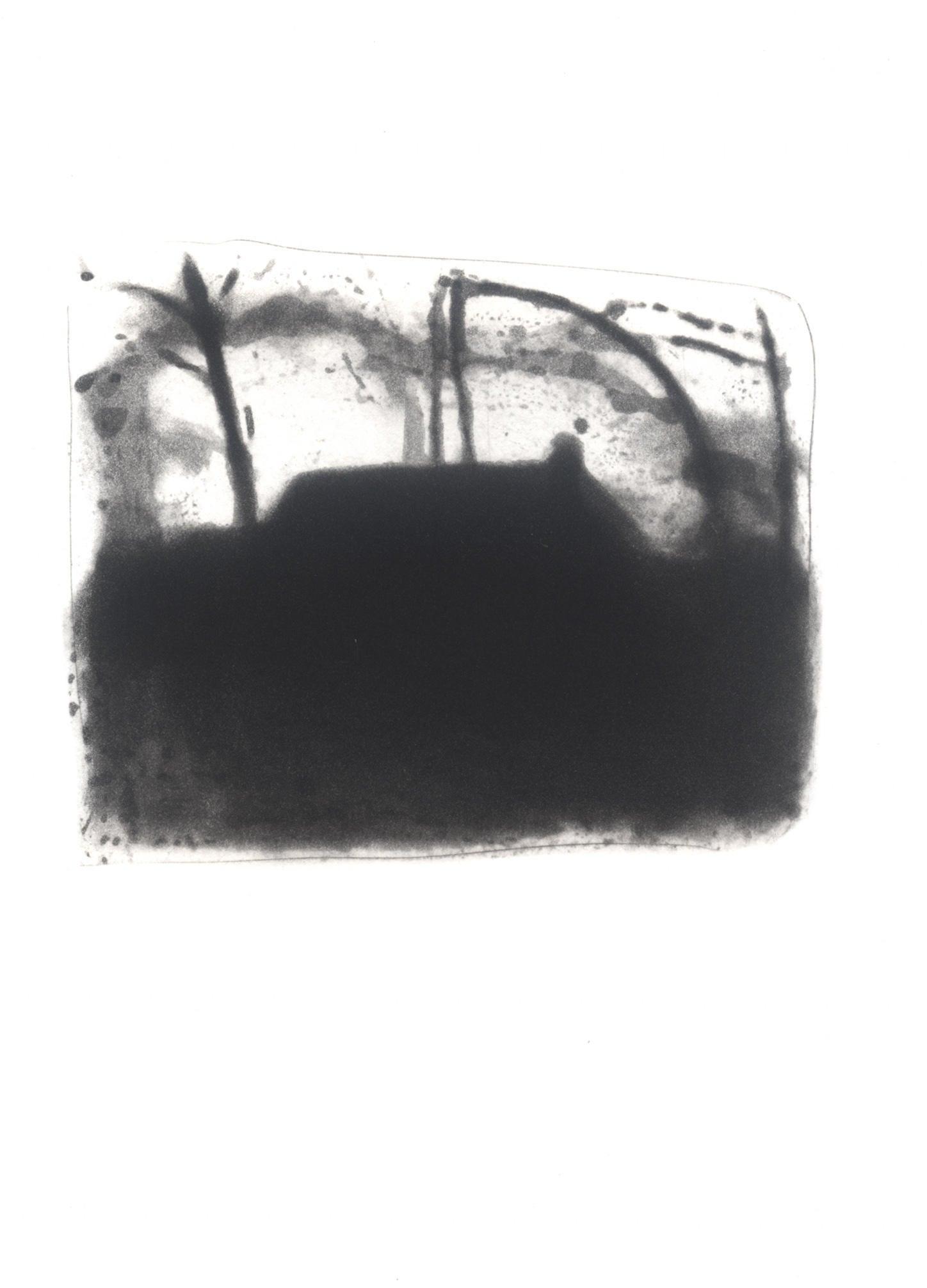 VI. Dusk image