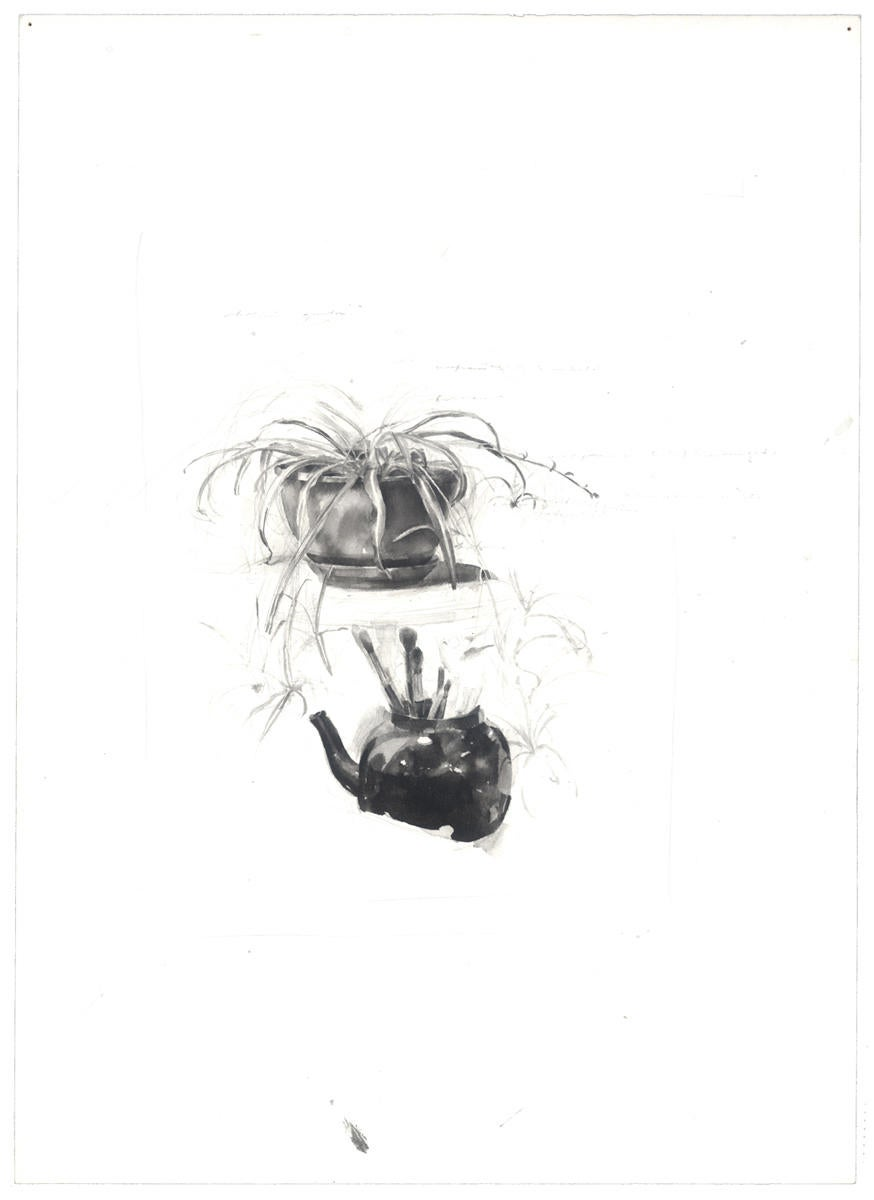 Spider Plant and Black Teapot image