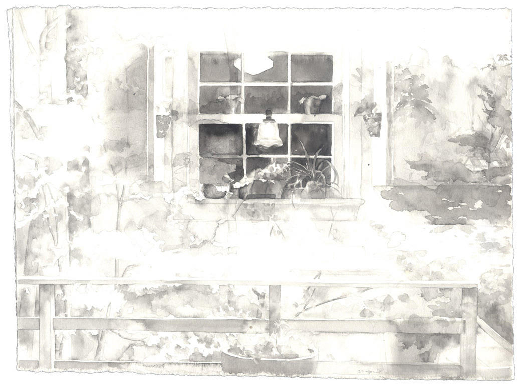 Kitchen Window: 21 April 1985 image