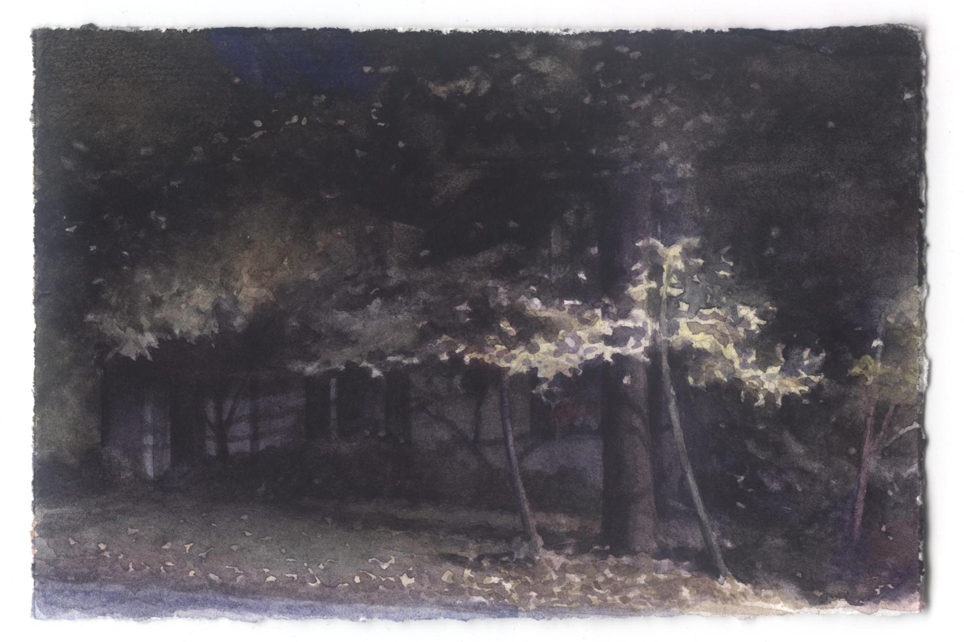 Dark House: Early Fall image