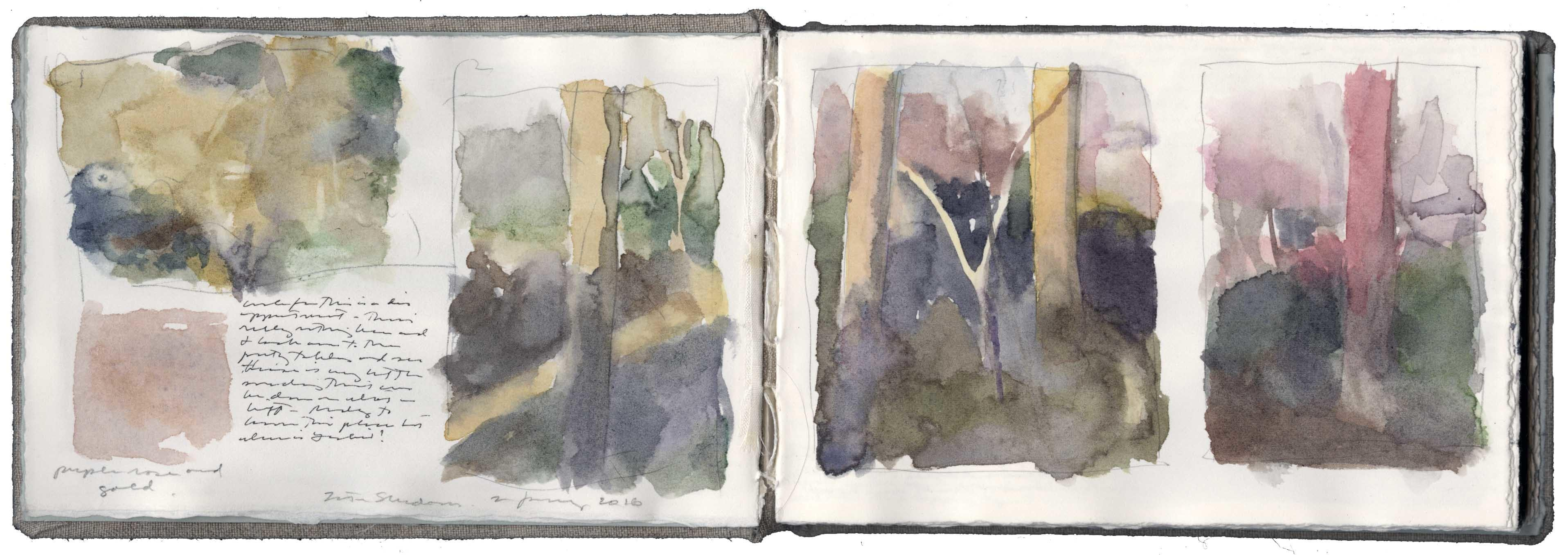 Color Studies of Late Afternoon Shadows image