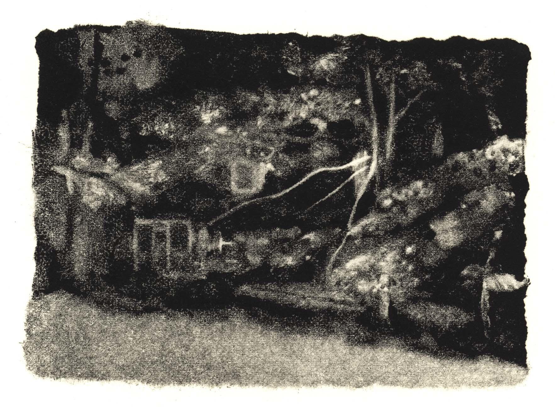 Dark House: Summer image