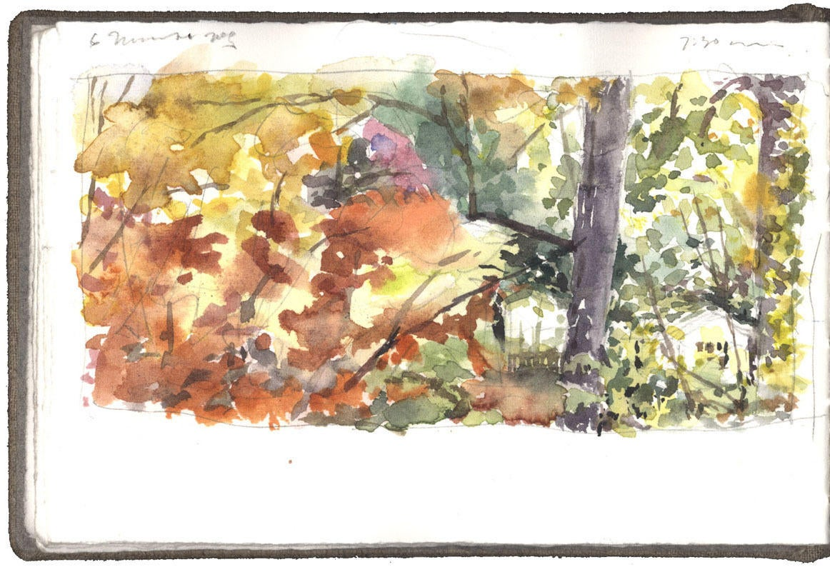 Fall Landscape image