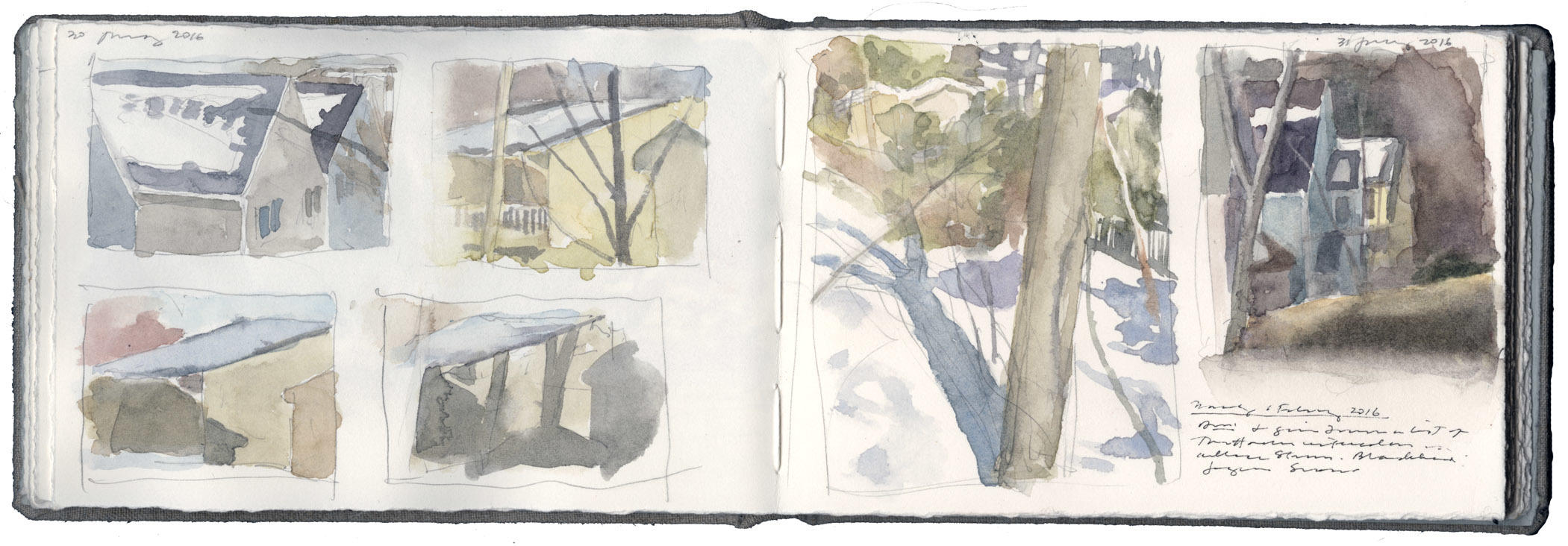 Studies of Melting Snow image